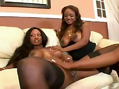 Three Chocolate Round Asses